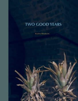 Two Good Years book cover