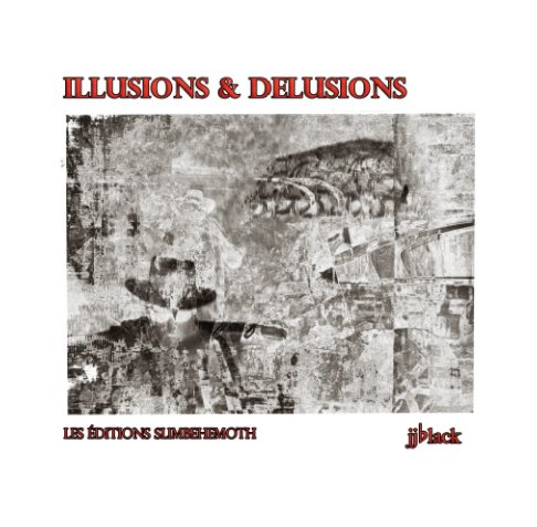 View Illusions & Delusions by jjblack