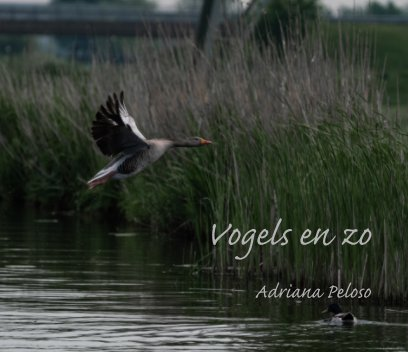 Vogels en zo book cover