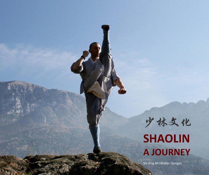 Visualizza SHAOLIN: a journey di Shi Xing Mi (Walter Gjergja)