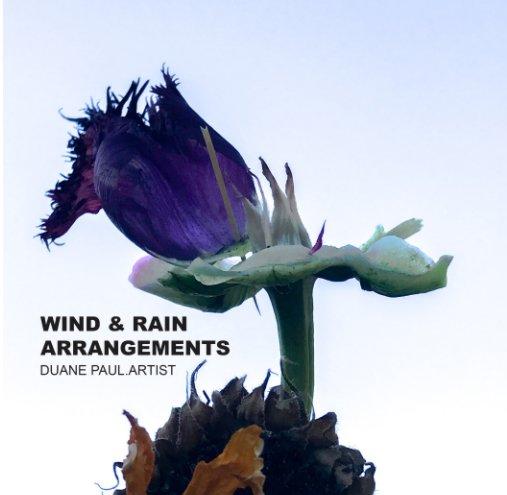 View Wind and Rain Arrangements by Duane Paul