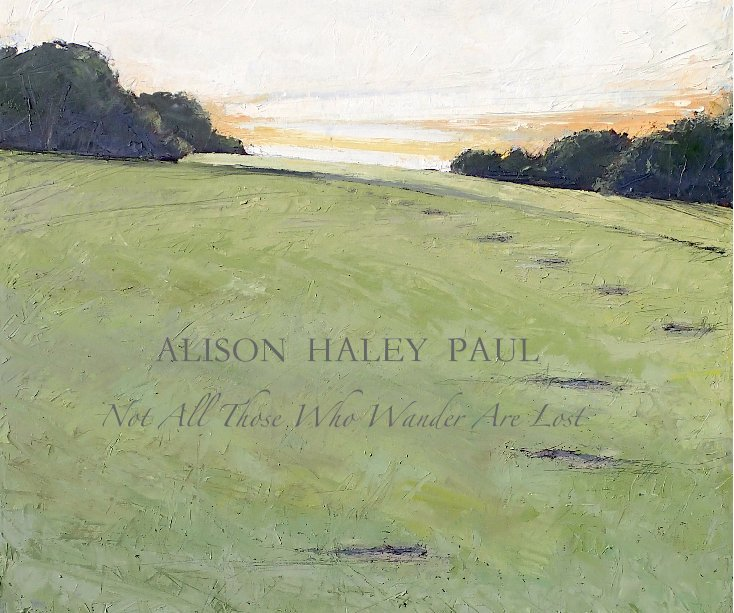 View NOT ALL THOSE WHO WANDER ARE LOST by ALISON  HALEY  PAUL