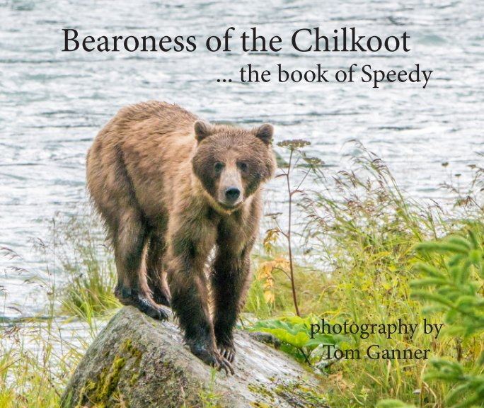 View Bearoness of the Chilkoot by Tom Ganner