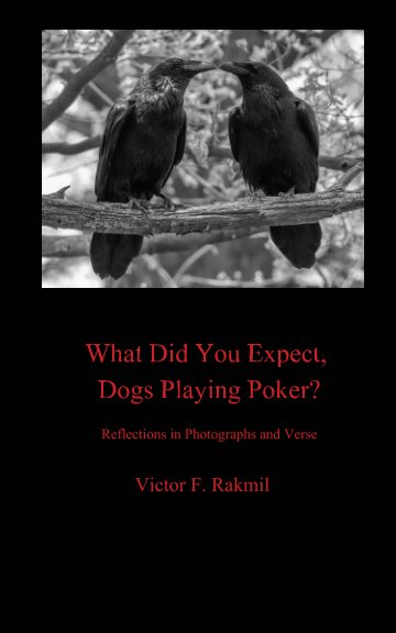 View What Were You Expecting, Dogs Playing Poker? by Victor F. Rakmil