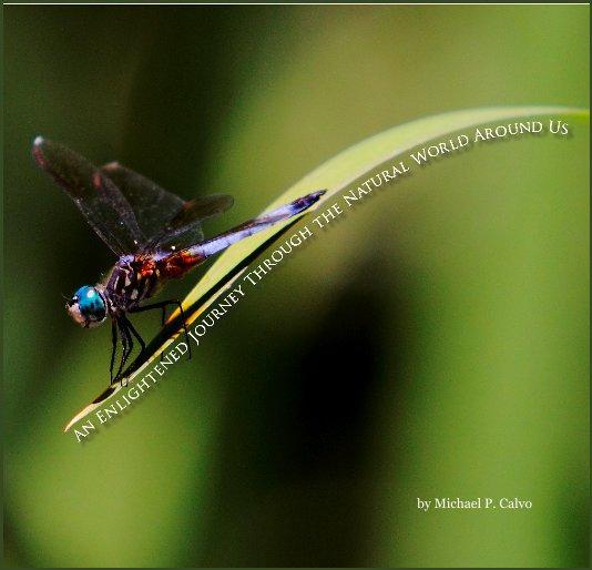View Enlightened Journey by Michael P. Calvo