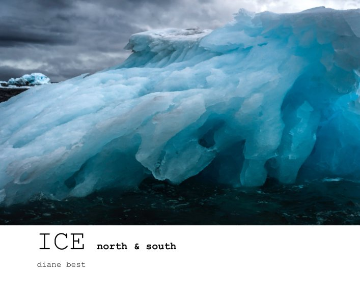 View ICE north and south by diane best