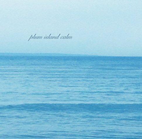 View Plum Island Calm by Mimi Weinberg