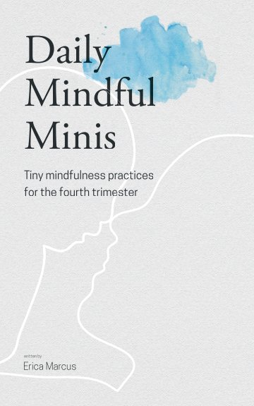 View Daily Mindful Minis by Erica Marcus