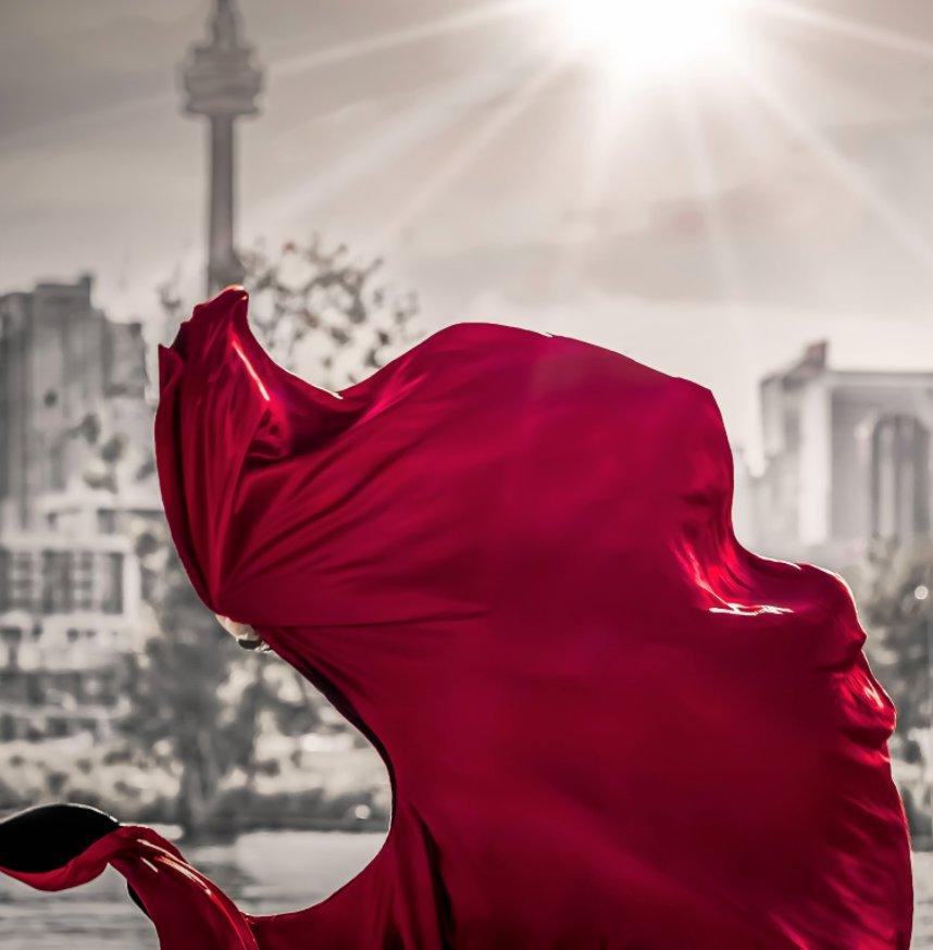 "View Urban Matador — 12"" Sq. Special Edition by Angel Torres, Brian R Torner"
