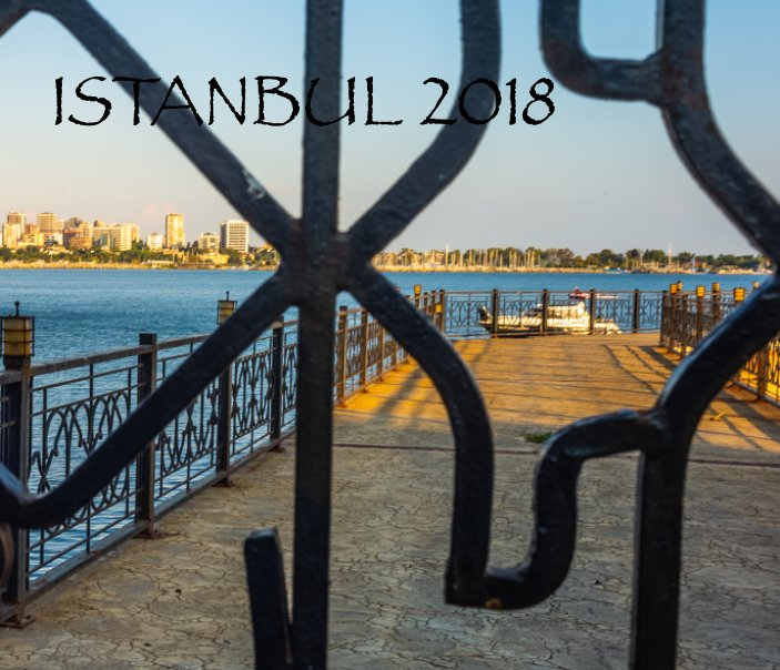 View Istanbul Margot and Deniz Wedding 2018 by Gloria Leigh O'Connell