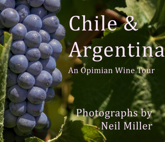 View Chile and Argentina by Neil Miller