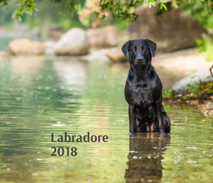 View Labradore 2018 by Cornelia Strunz