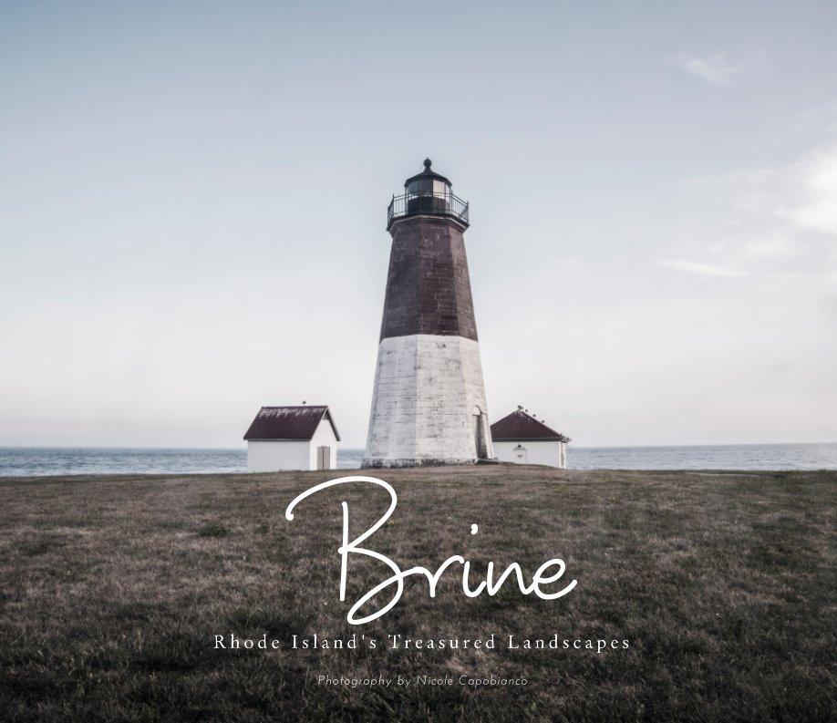 View Brine by Nicole Capobianco