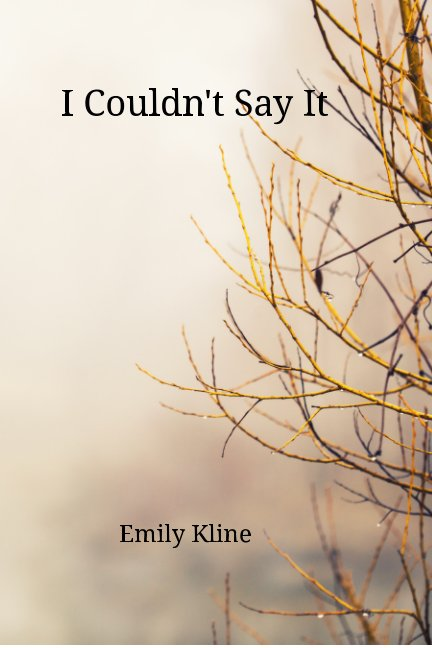 View I Couldn't Say It by Emily Kline