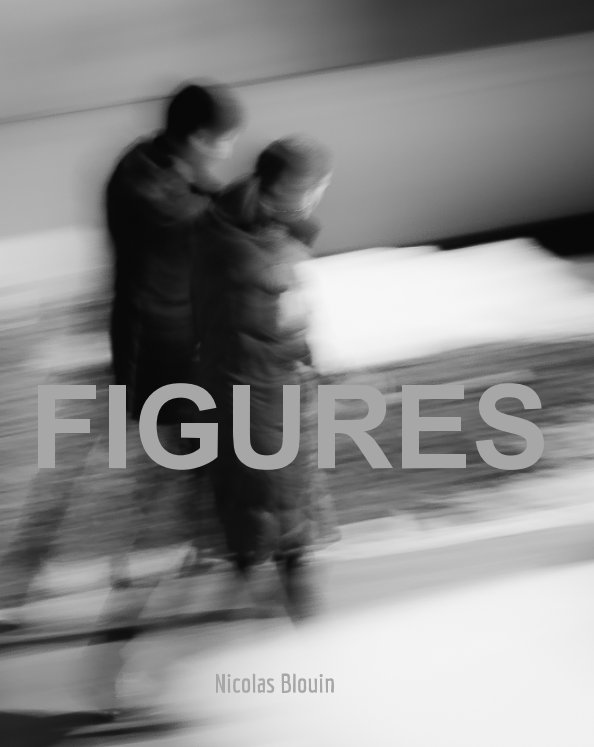 View Figures (Hardcover Edition) by Nicolas Blouin