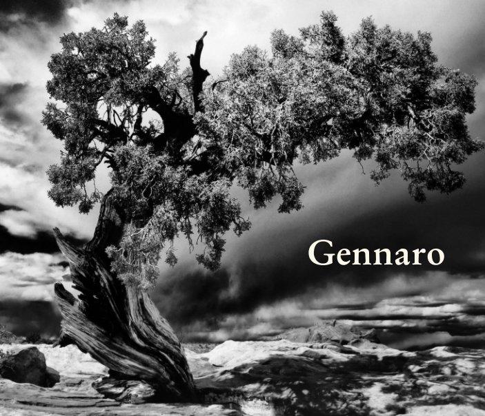 Ver Gennaro por Gennaro Zingone