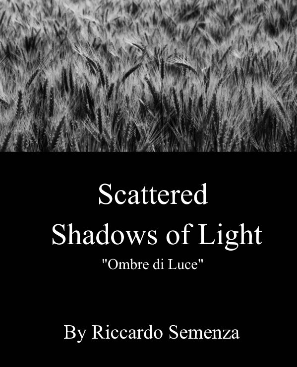 "Scattered Shadows of Light, ""Ombre di Luce"" nach Riccardo Semenza anzeigen"