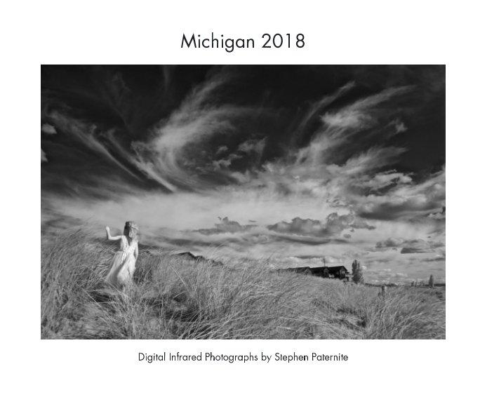View Michigan 2018 by Stephen Paternite
