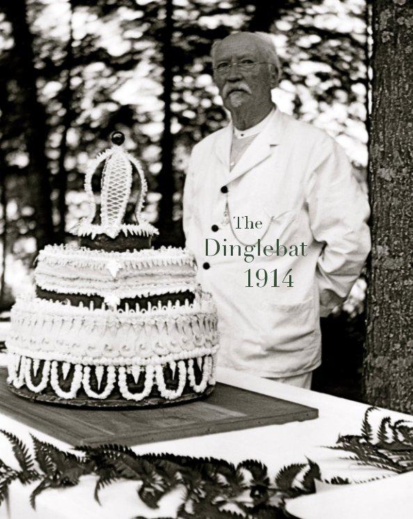 View 1914 Dinglebat - Camp Highlands for Boys by Tim Bachmann