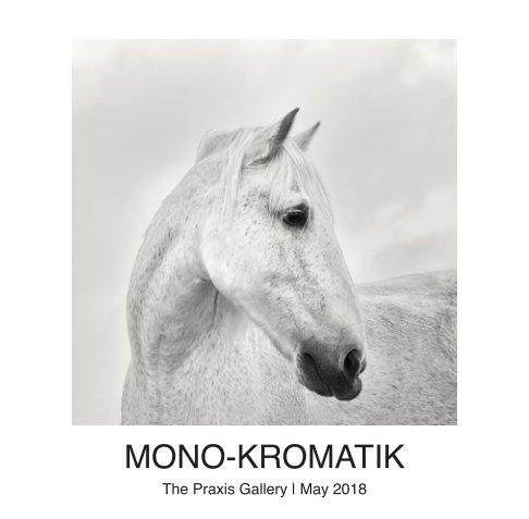 View Mono-Kromatik by The Praxis Gallery
