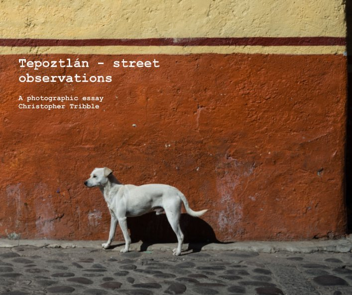 View Tepoztlán - street observations by Christopher Tribble