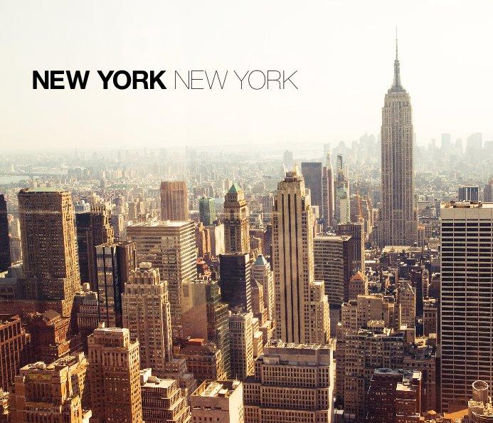 View New York New York by Hilda Grahnat
