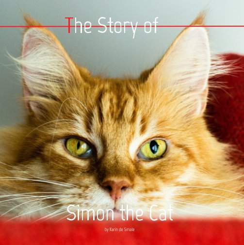 View The Story of Simon the Cat by PienterProjects
