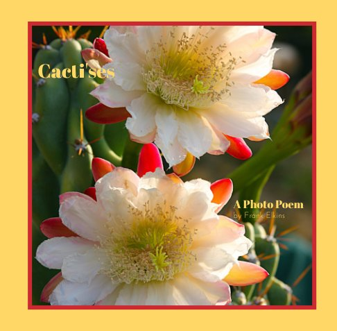View Cacti'ses by Frank Elkins