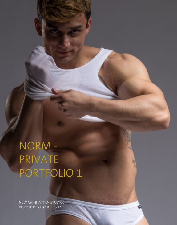 View Norm - Private Portfolio 1 by New Manhattan Studios