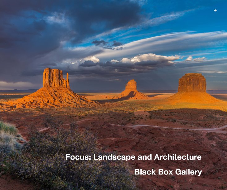 View Focus: Landscape and Architecture by Black Box Gallery