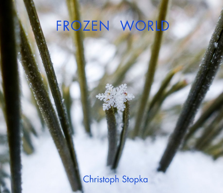 View Frozen World by Christoph Stopka