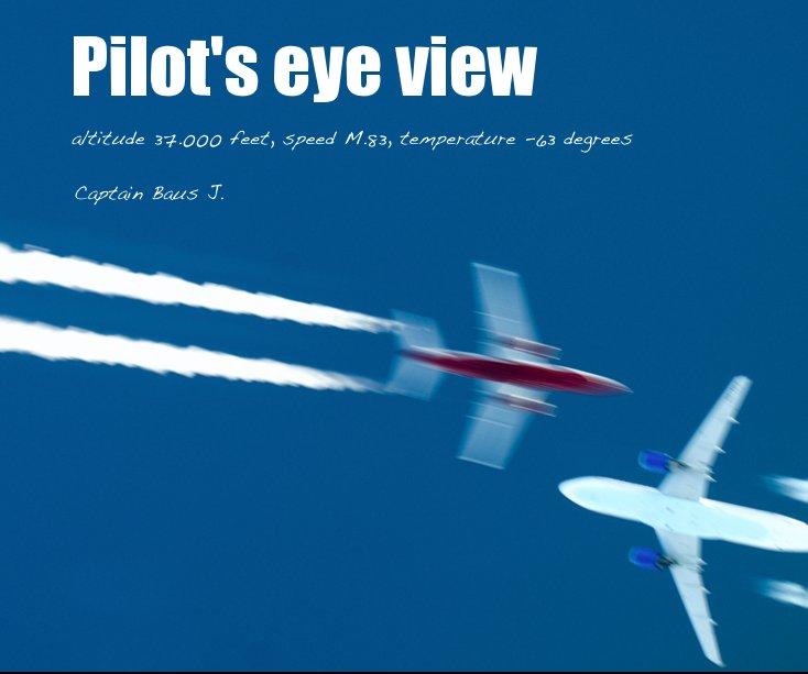 View Pilot's eye view by Captain Baus J.