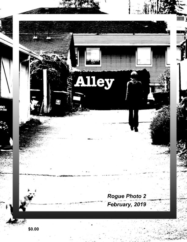 View Alley by Andrew Molitor