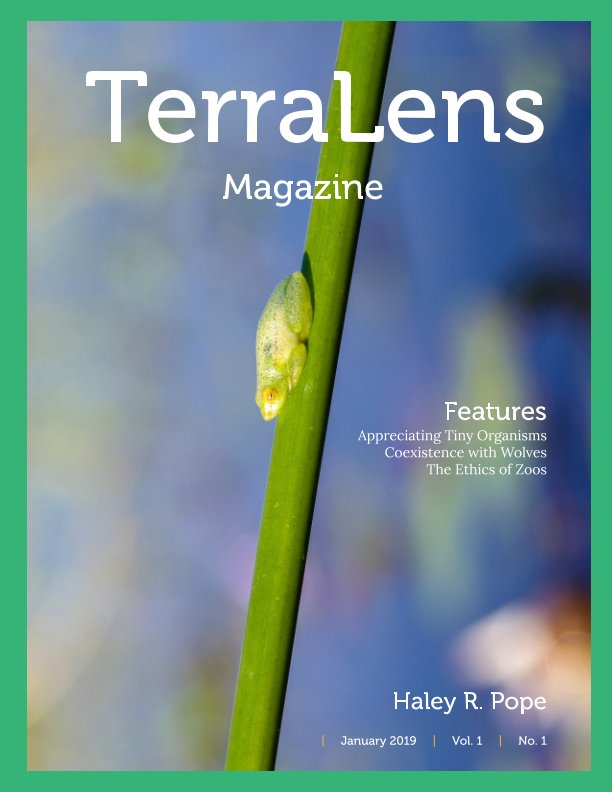 View TerraLens Magazine by Haley R. Pope