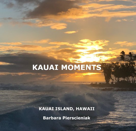 View KAUAI MOMENTs by Barbara Pierscieniak