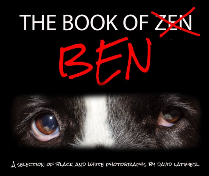 View The Book of Ben by David Latimer