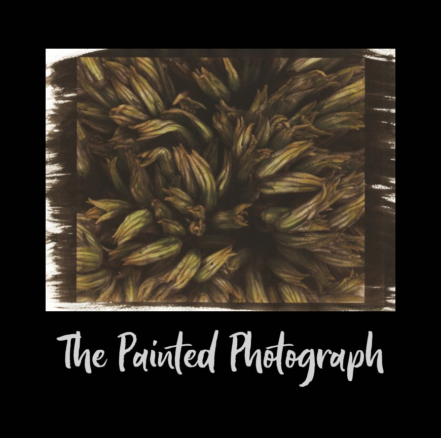 View The Painted Photograph by Jen Perena