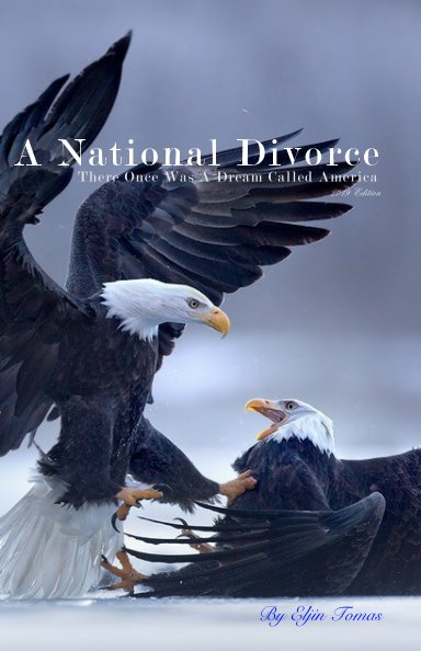 View A National Divorce by Eljin Tomas