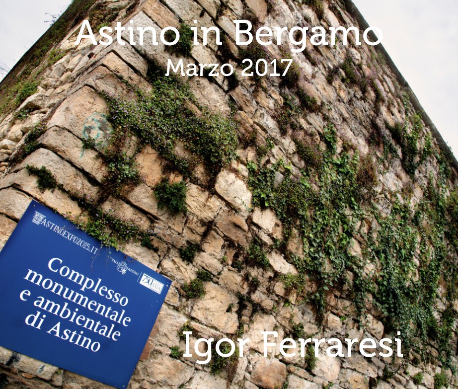 View Astino in Bergamo by Igor Ferraresi