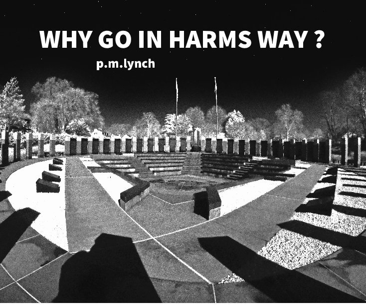 Ver Why Go In Harms Way  ? por p. m. lynch