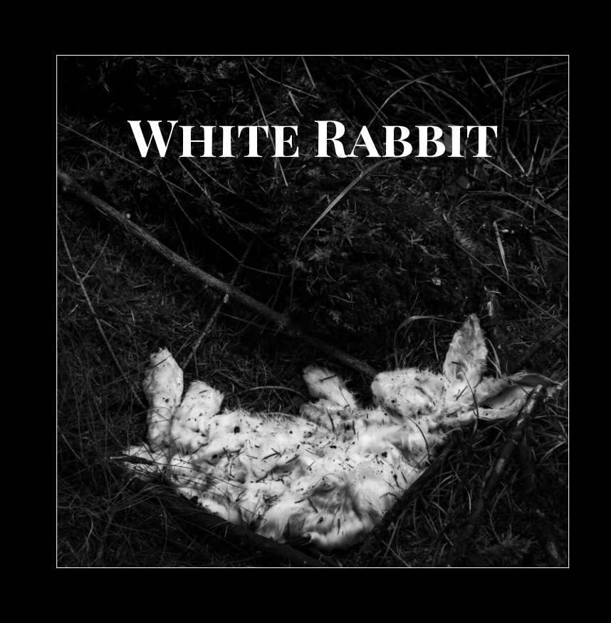 View White Rabbit by K Roberts