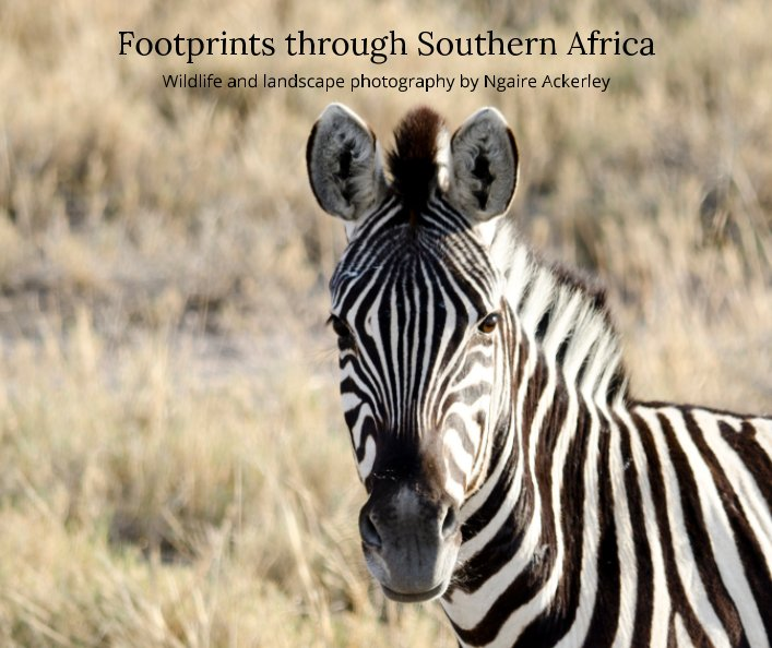 View Footprints through Southern Africa by Ngaire Ackerley