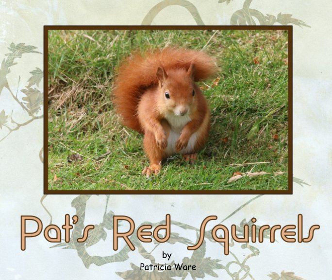 View Pat's Red Squirrels by Patricia Ware