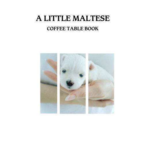 View A Little Maltese by LAWANDA M. BEYER