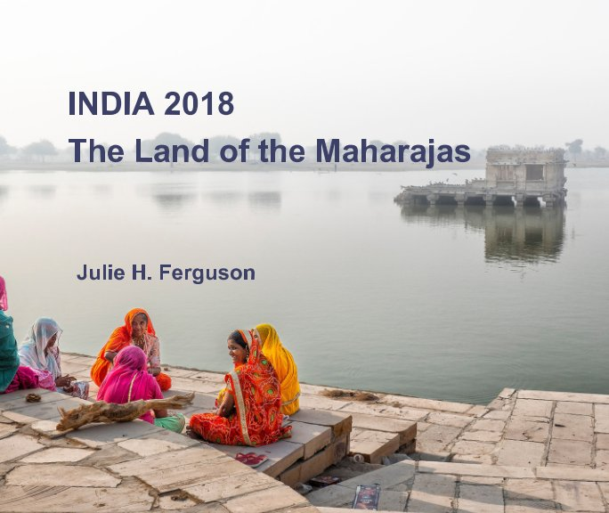 View India 2018 by Julie H. Ferguson