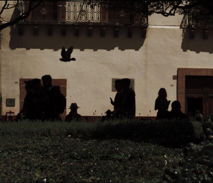 View San Miguel De Allende by Olivia Stults