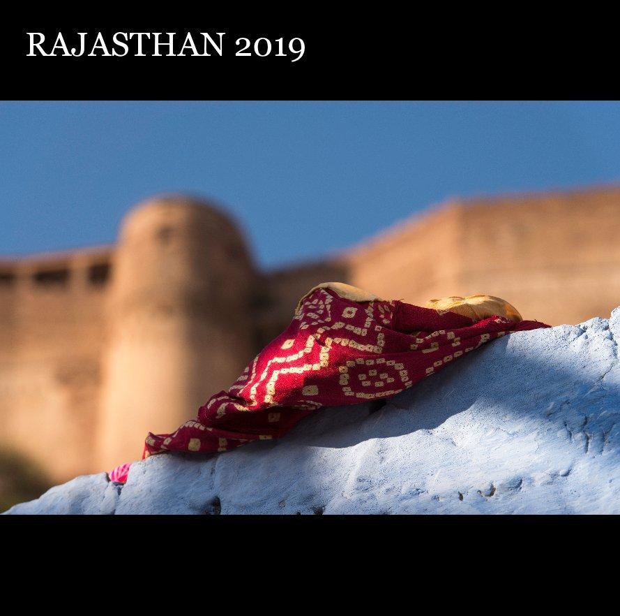 View Rajasthan 2019 by Riccardo Caffarelli