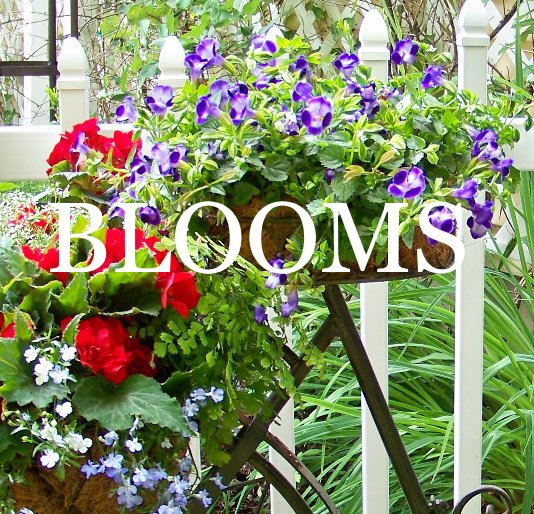 View Blooms by JSDesigns
