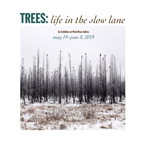 View Trees: Life in the Slow Lane, Softcover by PhotoPlace Galleryt