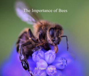 The Importance of Bees book cover